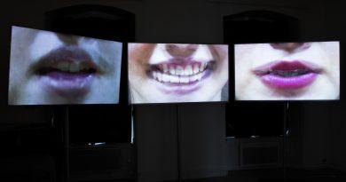 Le bruissement des langues – Les pièces sonores et visuelles
